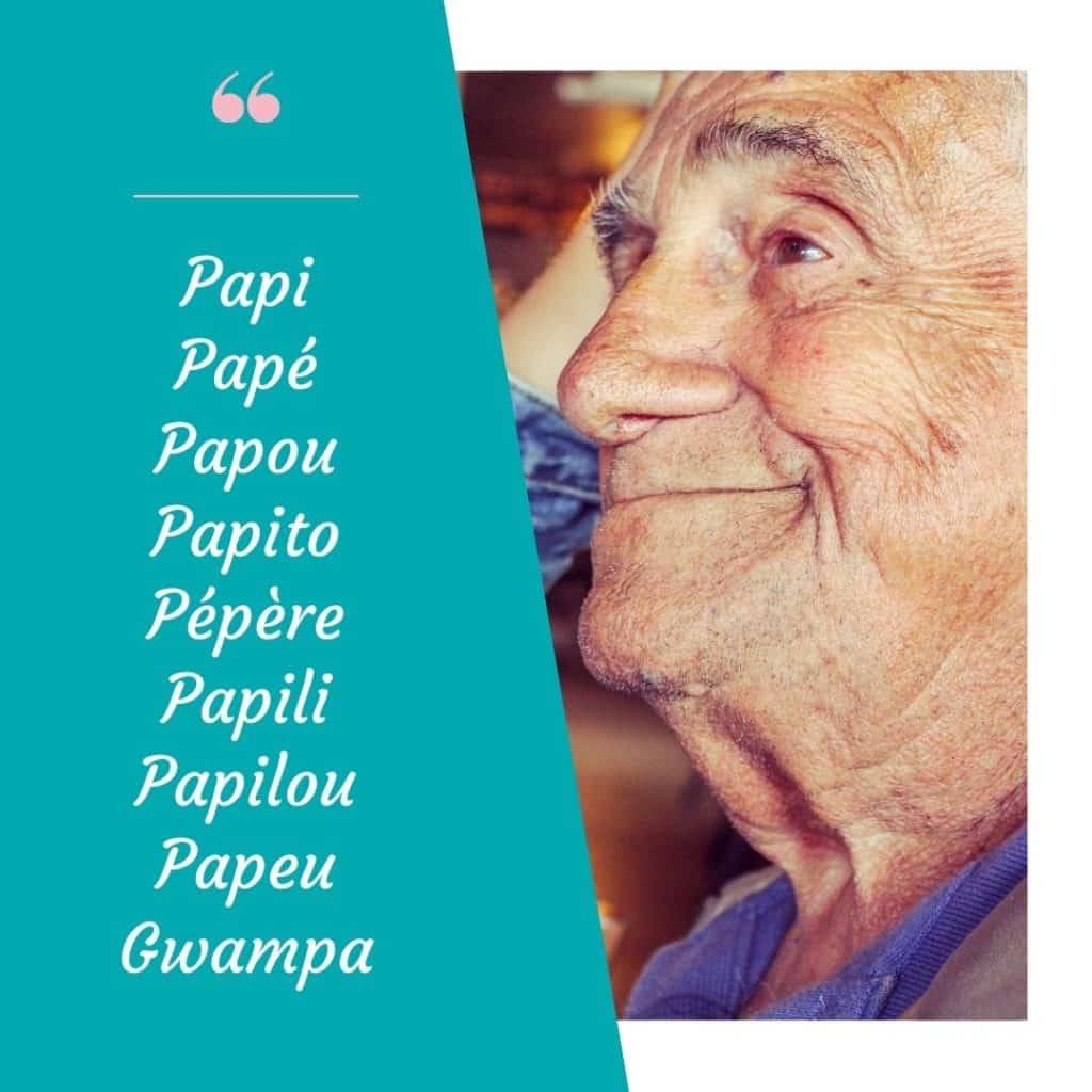 A la recherche d'un surnom pour grand-père ? En voici quelques uns : -Papi -Papé -Papou -Papili -Opa -Pé -Papeu -Papito -Gwampa...