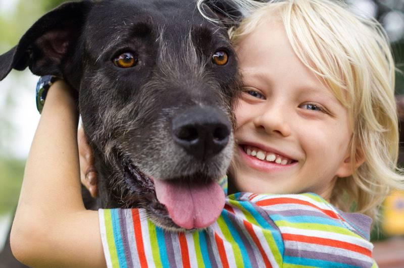 carte mamizette, enfant avec chien